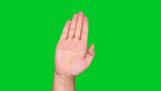 stockvideo's en b-roll-footage met 4k stop gebaar op chromakey - handpalm