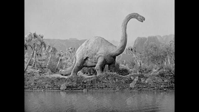 1925 stop motion allosaurus walks through the jungle grazing on foliage - extinct stock videos & royalty-free footage