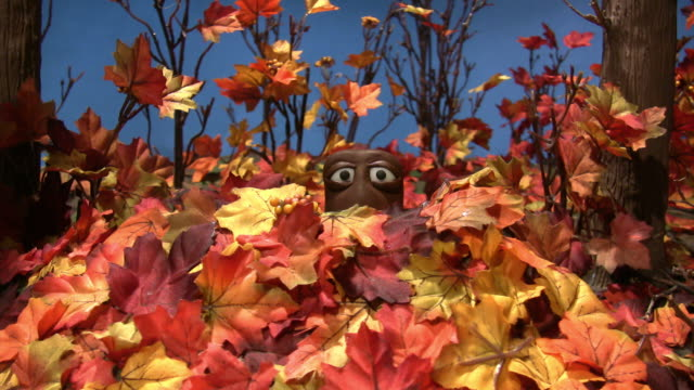 stop motion animated critter hides from a creature in a pile of leaves in the autumn woods - 隠れる点の映像素材/bロール