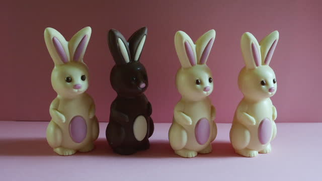 stop motion animation of easter bunnies lining up in a row and walking off together. - mammal stock videos & royalty-free footage