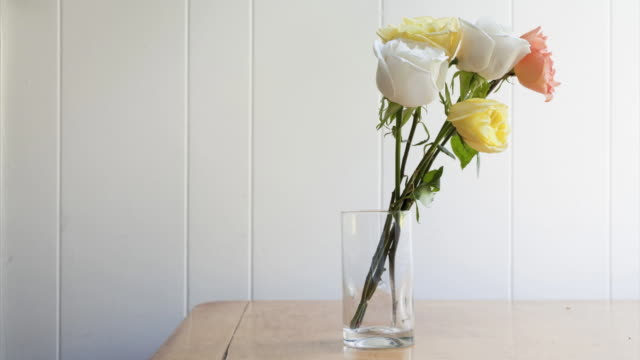 stop motion animation of roses wilting - drinking glass stock videos & royalty-free footage