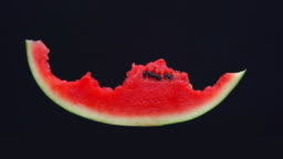 stop motion, Eating slice of watermelon  isolated on black background