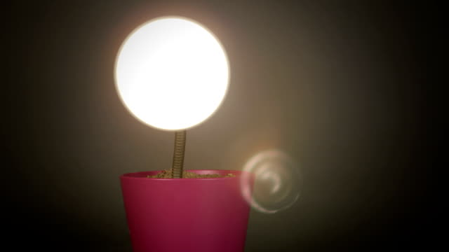 stop motion lamp loop-able - changing lightbulb stock videos & royalty-free footage