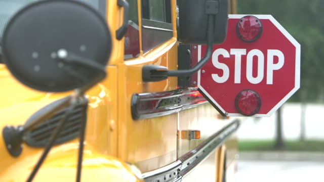 stop sign on school bus - stop sign stock videos and b-roll footage