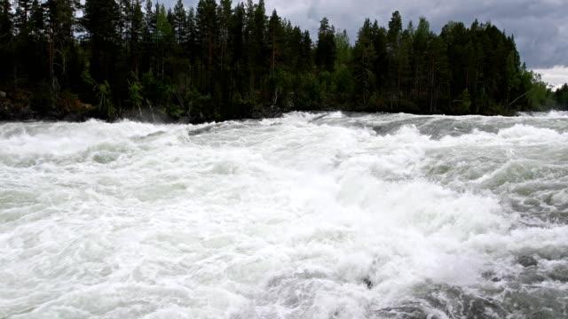 storforsen rapid in northern sweden - rapid stock videos & royalty-free footage