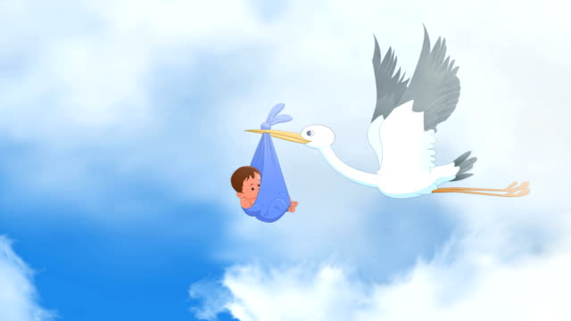 storks carrying babies - carrying stock videos & royalty-free footage