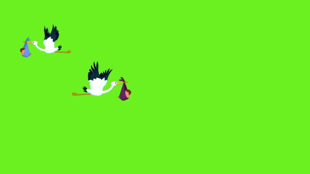 storks carrying babies - baby boys stock videos and b-roll footage