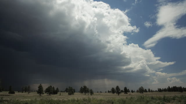 t/l ws storm and rain approaching above open field / flagstaff, arizona, usa - approaching stock videos & royalty-free footage
