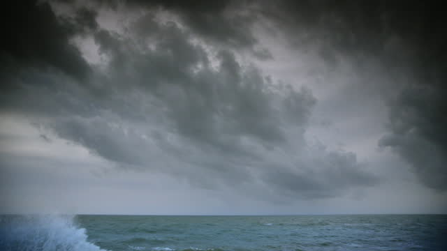 storm blows over palm trees and sea - mediterranean sea stock videos & royalty-free footage