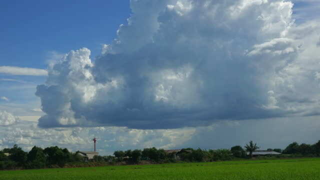 storm cloud in the field - cumulo video stock e b–roll