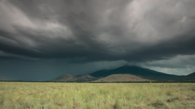 vidéos et rushes de ws t/l storm clouds and lightning passing over san francisco peaks with grassy field in foreground / flagstaff, arizona, usa - grandiose