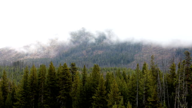 Storm Clouds Covering Mountain Tops