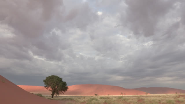 Storm clouds drift in the sky above the Namib Desert.