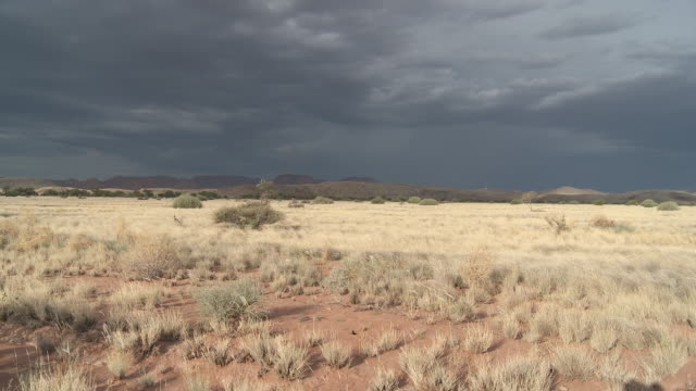Storm clouds fill the sky over the arid Damaraland landscape.