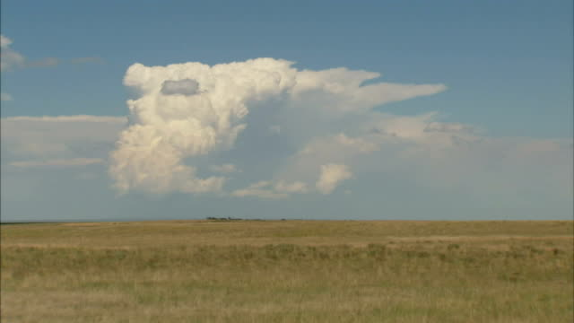 storm clouds hover over a prairie. - prairie stock videos & royalty-free footage