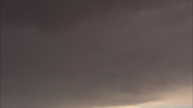 Storm clouds loom over the Kalahari Desert.