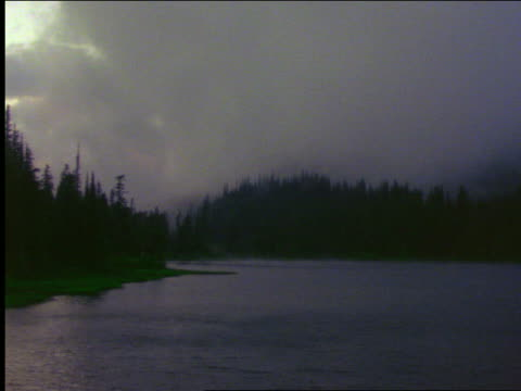 storm clouds (fog?) moving over pine trees with lake in foreground / mt rainier national park, washington - mt rainier national park stock videos & royalty-free footage