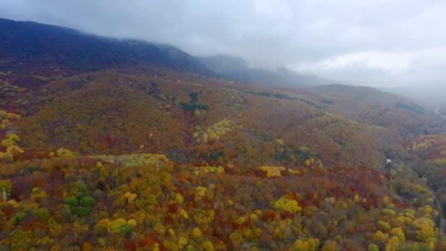 ANTENNE: nuages d'orage sur la forêt d'automne coloré sur les crêtes de montagne