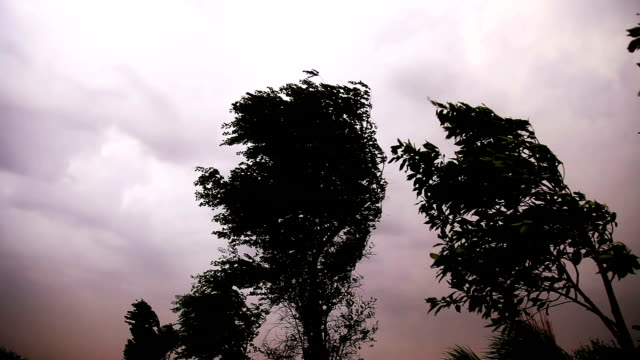 storm outdoor in the nature - shower stock videos & royalty-free footage