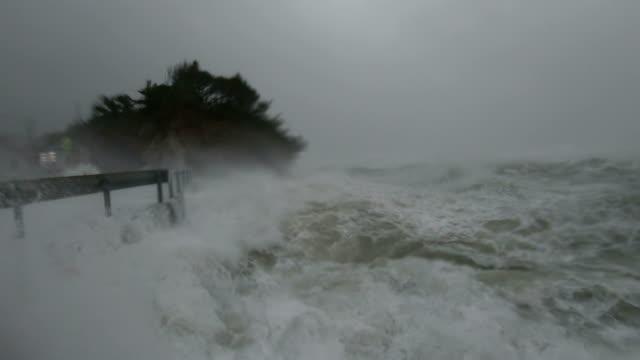 vídeos y material grabado en eventos de stock de storm surge waves and powerful hurricane winds lash camera as typhoon hagibis hits japan - catástrofe natural