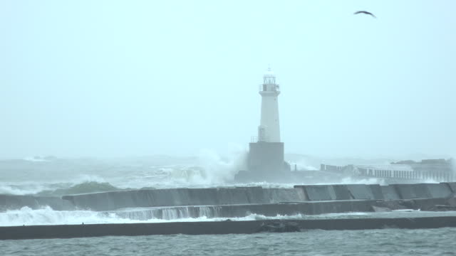storm surge waves at high tide over spill a sea wall as typhoon shanshan affects japan - tropical storm stock videos & royalty-free footage
