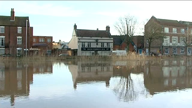 gvs bridgwater england somerset bridgwater ext gvs flooded river parrett / tree fallen inside river / cu ducks swimming on river / bridge with people... - bandstand stock videos and b-roll footage