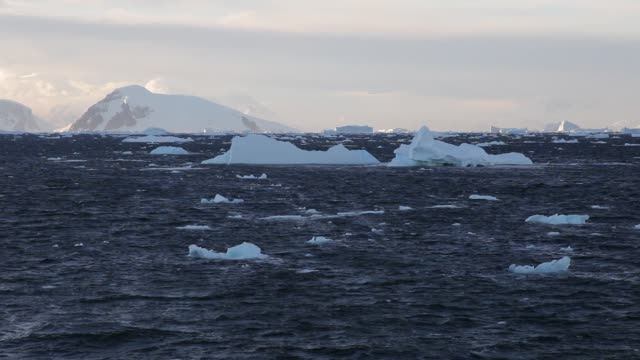 Stormy Antarctic ocean with floating icebergs