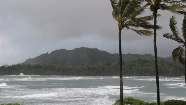 stormy island - tropical storm stock videos & royalty-free footage
