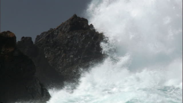 vidéos et rushes de stormy sea crashes onto rocky coast, macquerie island, australia - roc