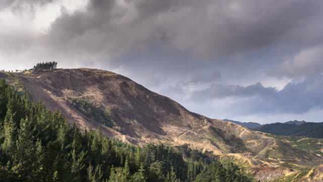 stormy sky over deforested hillside - time lapse - forestry industry stock videos & royalty-free footage