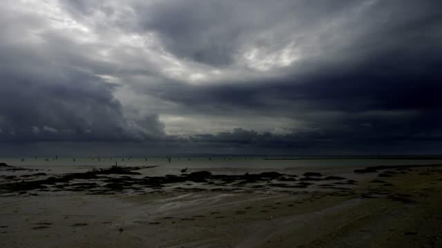 Tempestuosa tempo-time lapse