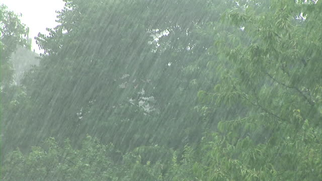 hd: stormy weather - torrential rain stock videos & royalty-free footage