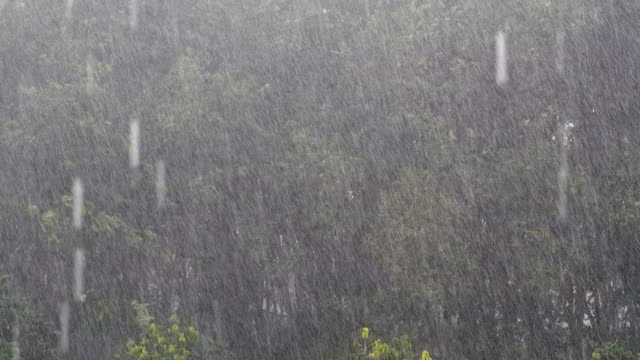 stormy weather - torrential rain stock videos & royalty-free footage