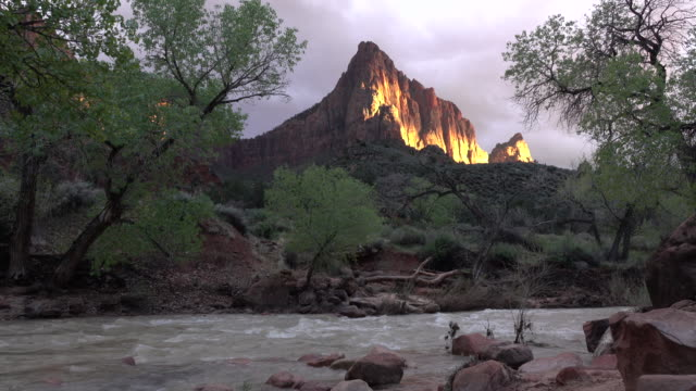 stormy zion national park watchman sunset virgin river utah - cottonwood tree stock videos and b-roll footage