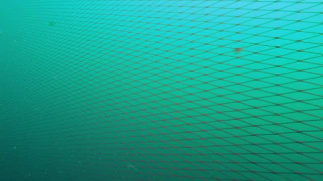 stow net under sea / taean-gun, chungcheongnam-do, south korea - undersea stock videos & royalty-free footage