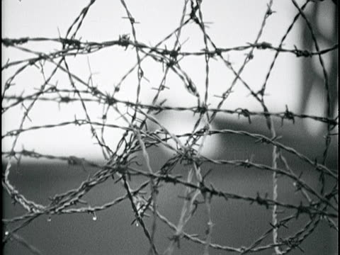 straight & curled cluster of barbed wire on top of berlin wall rack focus watchtower in east germany w/ grenzpolizei . cold war, communism, east-west... - stacheldraht stock-videos und b-roll-filmmaterial