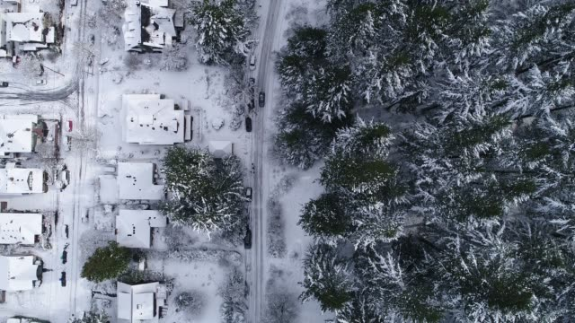 aerial: straight down view of a neighborhood at the edge of a forest - at the edge of stock videos and b-roll footage