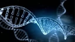 DNA Strand slow motion