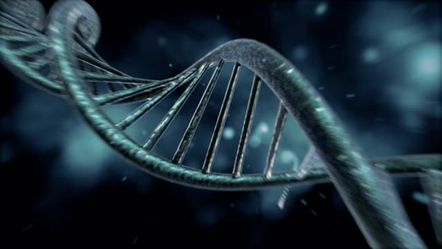 dna strand - helix model stock videos & royalty-free footage
