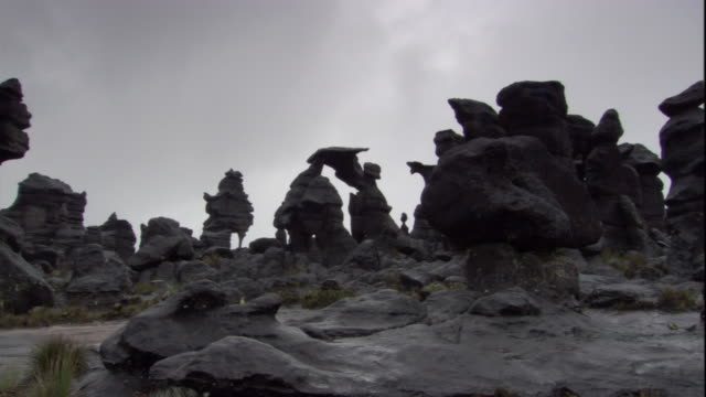 strange rock formations on summit of auyantepui. available in hd. - tafelberg felsformation stock-videos und b-roll-filmmaterial