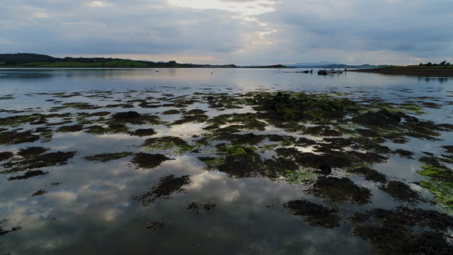 strangford lough, northern ireland, united kingdom - twilight stock videos & royalty-free footage