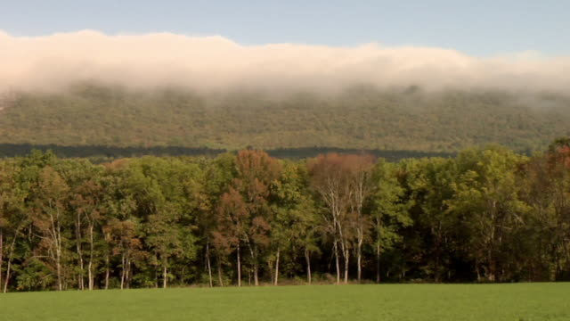 t/l, ws, stratus clouds over autumn forest and field, lock haven, pennsylvania, usa - anno 2008 video stock e b–roll