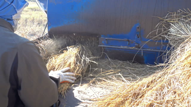 straw and agricultural machine - man and machine stock videos & royalty-free footage