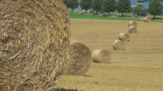 ms straw bales on harvested field / saarburg, rhineland palatinate, germany - hay stock videos and b-roll footage