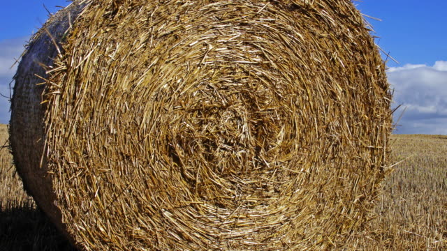 straw bales - hay bail stock videos & royalty-free footage