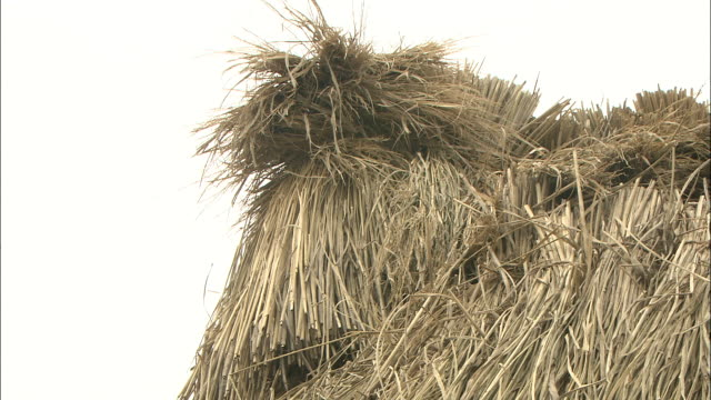 straw comprises a japanese haystack. - haystack stock videos & royalty-free footage