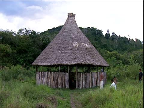 vidéos et rushes de straw hut venezuela - cabane structure bâtie