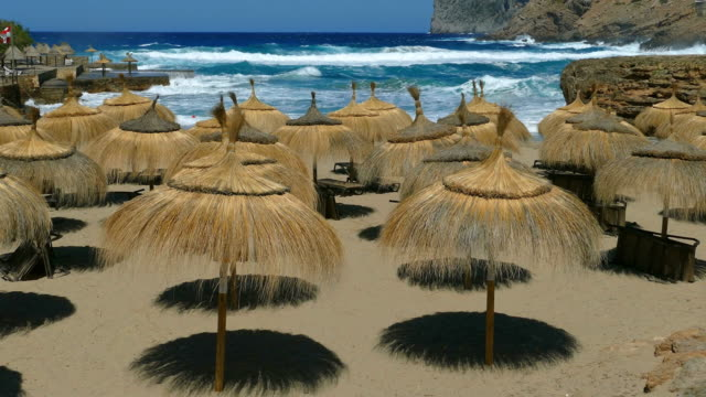 straw sunshades on a beach - sonnenschirm stock-videos und b-roll-filmmaterial