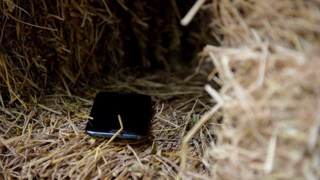 straw - bale stock videos & royalty-free footage