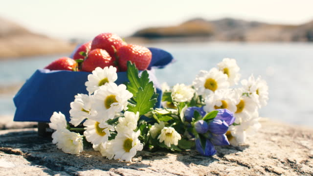 strawberries and flowers - solstice stock videos & royalty-free footage
